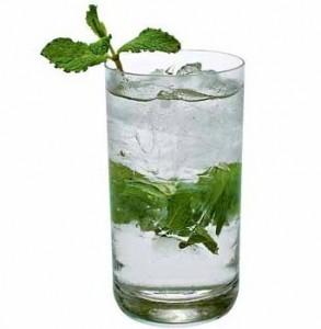 mojito1 293x300 Qual bebida combina com você?
